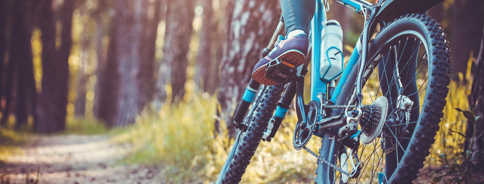 Fotoğraf - İki kişi için Orman Bisiklet Turu